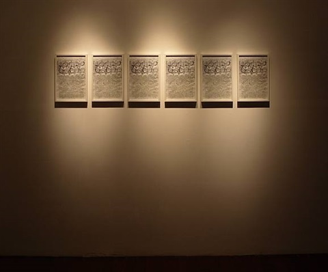 installation view of memoirs (1975-2008) by navjot altaf