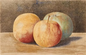 three apples by john william hill