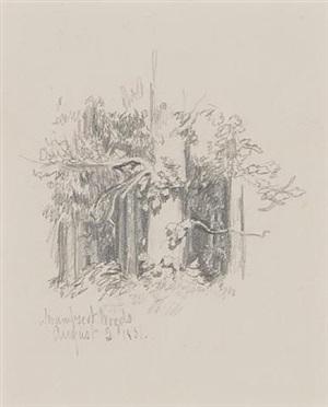 swampscot woods by francesca alexander