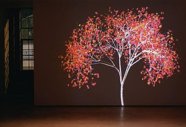 dervish (installation at lehmann maupin gallery) by jennifer steinkamp