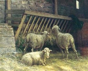the sheep cove by carleton wiggins