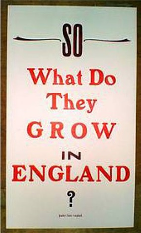 so what do they grow in england by helen ingham
