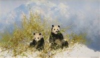 panda's in woolong reserve by david shepherd