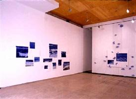 installation view by adriana varejão