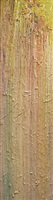 preamble by larry poons