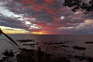 pink sky by simon schaffer-goldman