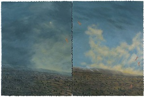 another landscape for diane by paul waldman