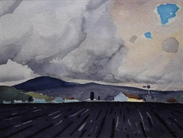 salinas valley by james fitzgerald