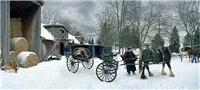 a horse drawn hearse, queen royal tours, 174 anne, niagara on the lake, ontario by scott mcfarland