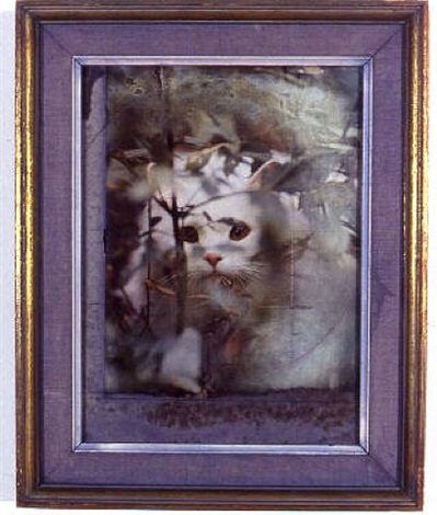 the sylph by joseph cornell