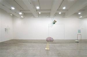 installation views: charles long tanya bonakdar gallery 2009 by charles long