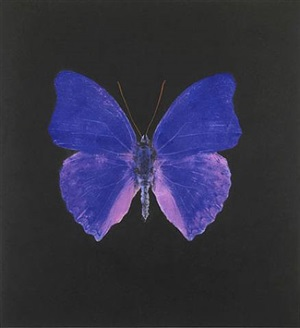 the souls on jacob's ladder take their flight (large blue) by damien hirst