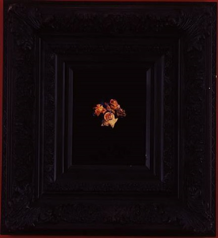 burning flowers i by mat collishaw