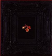 burning flowers ii by mat collishaw