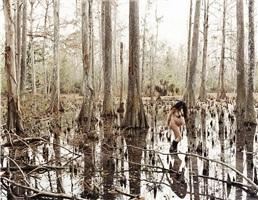 wild palms by justine kurland