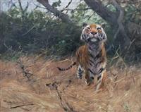 tigre olfateando la presa by wilhelm friedrich kuhnert