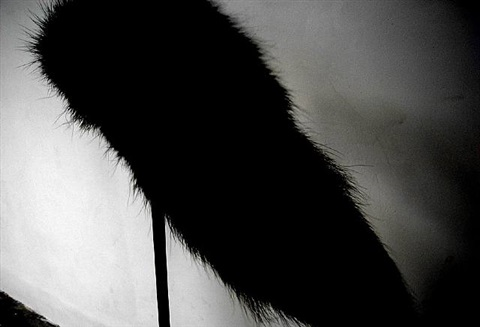 an artist's tail (detail) by colin chinnery