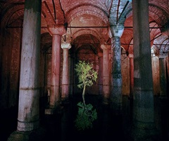 eye catching (installation for 8th international istanbul biennial) by jennifer steinkamp