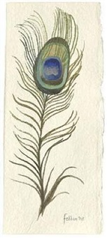 peacock feather by mary fedden