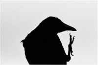 erimo cape (from the series solitude of ravens) by masahisa fukase