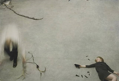 fable by robert & shana parkeharrison