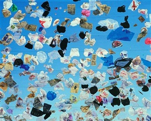 eulogy to a dumpscape: fresh kills landfill by stephen wilkes
