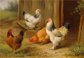 pecking order by edgar hunt
