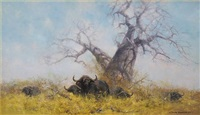 cape buffalo by david shepherd