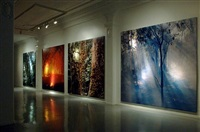 australian bush before, during and after a bush fire by claudia terstappen