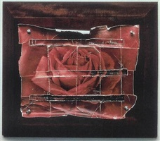 the rose by doug and mike starn