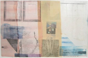 infusion by robert rauschenberg