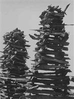 chapil de leña (woodpile) (103414) by manuel alvarez bravo