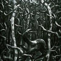 foret noire by josé garcía cordero