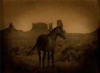 mustang/monument valley, utah by jack spencer