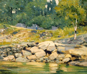 the rocky shore by henry bayley snell