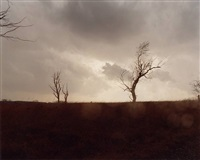 #5462 by todd hido
