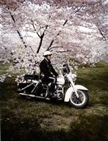 springtime, washington by evelyn hofer