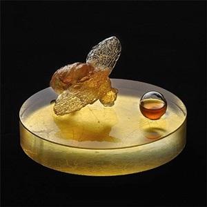 nectar by lita albuquerque