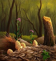 morrel mushrooms by anthony benton gude