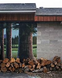 wood pile - tyhee idaho by alexis pike