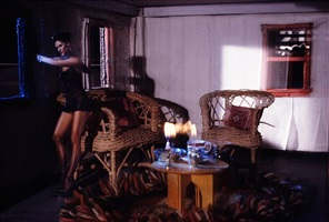 study for long house (den) by laurie simmons