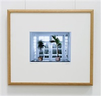 talking trees – window by ger van elk