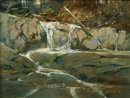 rushing waters by albert handell