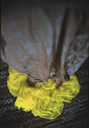on the yellow by beverly semmes