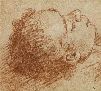 the head of a sleeping boy by lodovico carracci