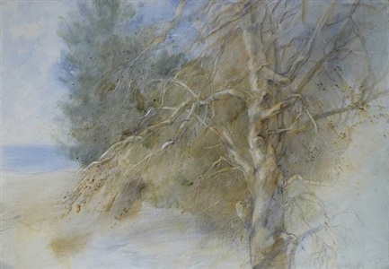 tree on the beach by jane morris pack