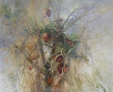 pomegranate tree by jane morris pack