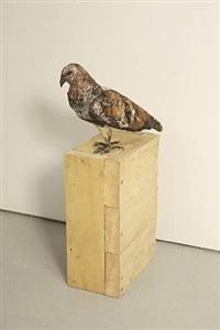 birds of prey (hawk) by anne chu