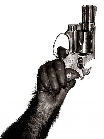 monkey with gun, new york city, 1992 by albert watson