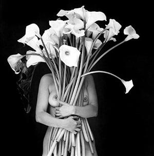 abrazo de luz by flor garduño